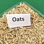 tips for adding oats to your diet
