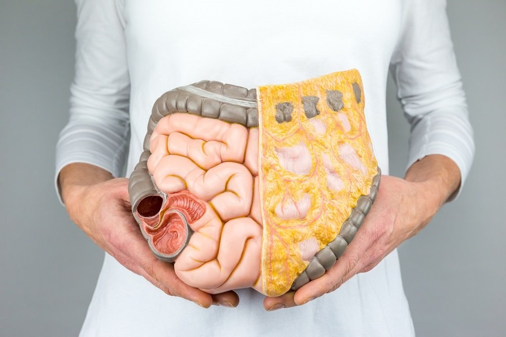 Surprising Causes of Leaky Gut