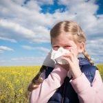 Ready for fall allergy season